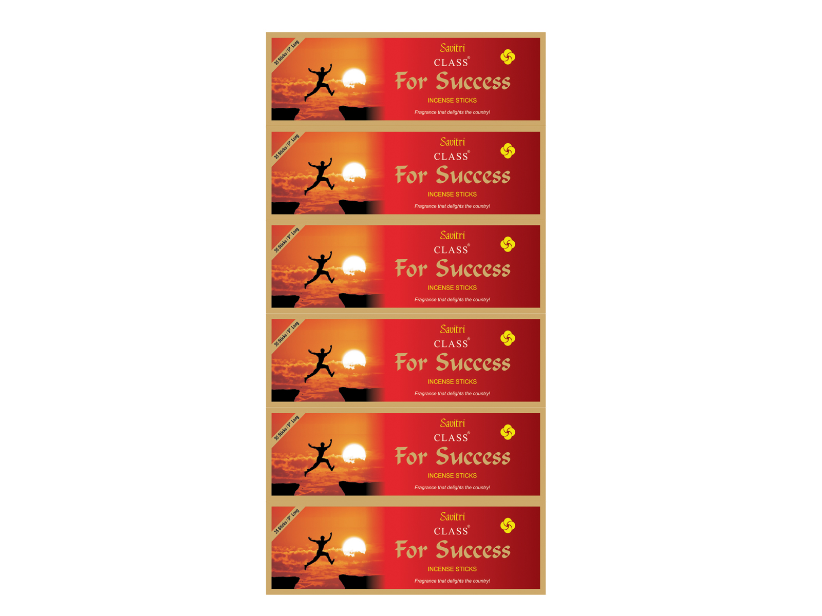 For Success_pouches